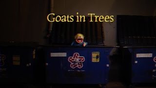 """Goats in Trees"" Music Video"