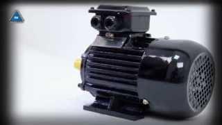 Электродвигатель АИР 80 В4 от компании ПКФ «Электромотор» - видео