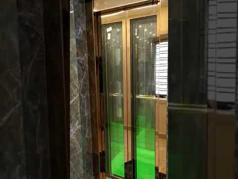 Premium Model Passenger Elevator
