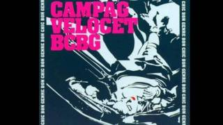 Campag Velocet -  Pike in my life/Schiaparelli Cat