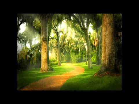 """The Four Seasons: Concerto No. 1 in E major, Op. 8, RV 269, """"La primavera"""" (Spring): III Allegro Pastorale (1725) (Song) by Antonio Vivaldi"""