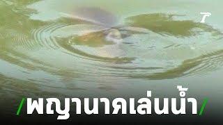 ฮือฮา! ชาวบ้านแห่มุงดู เชื่อนาคโผล่ขึ้นเล่นน้ำ | 19-07-62 | ตะลอนข่าว