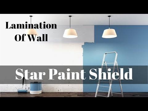 Star Paint Shield