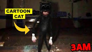 DONT GO TO AN ABANDONED PARK OR CARTOON CAT WILL APPEAR!   CARTOON CAT FOUND IN AN ABANDONED PARK