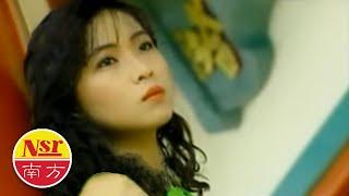 谢采妘Michelle Hsieh - 柔情典藏辑【回想曲+我不该爱你】