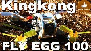 ✔ Квадрокоптер Kingkong FLY EGG 100 - New Pids Test + 3S Test! Banggood