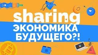 Amazon в сфере шэринг-экономики | Обзор ICO ShareRing