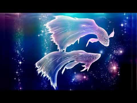 Дракон гороскоп козерог