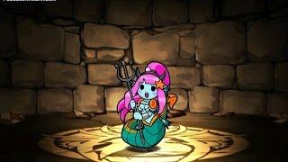 Devil Mermaid Plus Evo Fusion