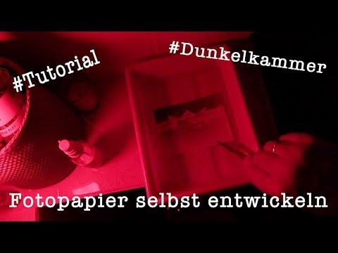 Tutorial: Fotopapier selbst entwickeln - einfach erklärt (Dunkelkammer)