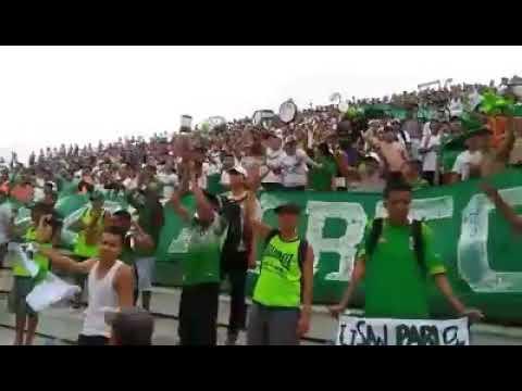 """""""Este es el año capira"""" Barra: Máfia Verde • Club: Liga de Portoviejo"""