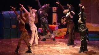 preview picture of video 'il Gatto con gli Stivali'