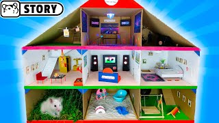 GIANT Cardboard Hamster HOUSE 🐹 Syrian Hamsters In 3-Level PLAYGROUND 🐹 Come And Enjoy - Homura Ham