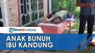 Ditanya soal Golok oleh sang Anak, Ibu di Lampung Timur Tewas Jadi Bulan-bulanan Dibacok Pelaku