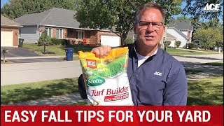 Easy Fall Lawn Tips For Your Yard - Ace Hardware