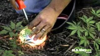 Outdoor Lighting Troubleshooting Tips