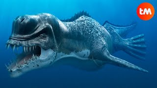 10 PREHISTORIC WHALES You Won´t Believe Existed
