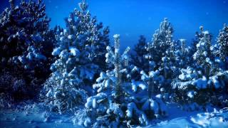 Roger Whittaker - Silent Night