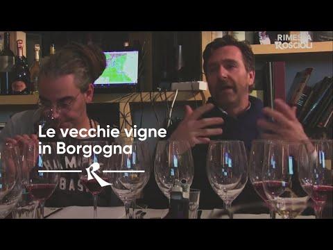 Rimessa Roscioli Roma - Le Vecchie Vigne in Borgogna - Filippo Volpi