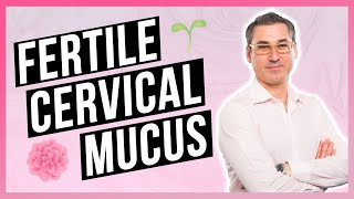 Improve your Cervical Mucus for Fertility