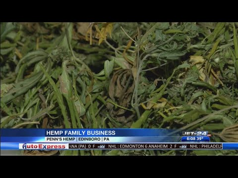 Edinboro family getting into successful hemp business