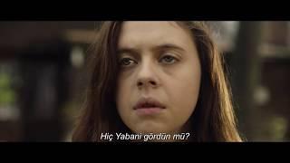 Yabani