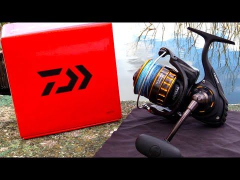 Daiwa BG Review | The Perfect Spinning Reel???