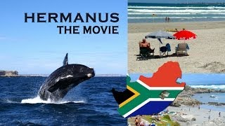 preview picture of video 'Hermanus the Movie, in the Cape Whale Coast'