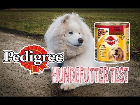 PEDIGREE Hundefutter im Test   Nassfutter für Hunde   Review   JulisTierfuttertest #14