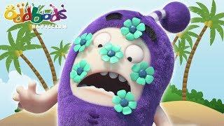 ЧУДДИКИ: Двухсторонний Остров   Смешные детские видео