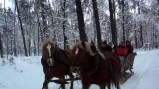 preview picture of video 'Fahrt mit dem Pferdeschlitten in Schmannewitz'