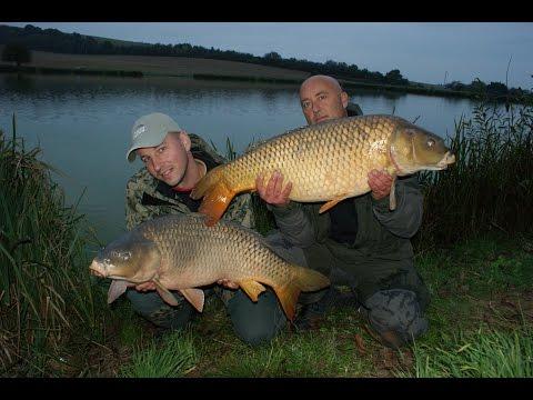 Ryby, rybky, rybičky – 24/2014, premiéra 21.11.2014