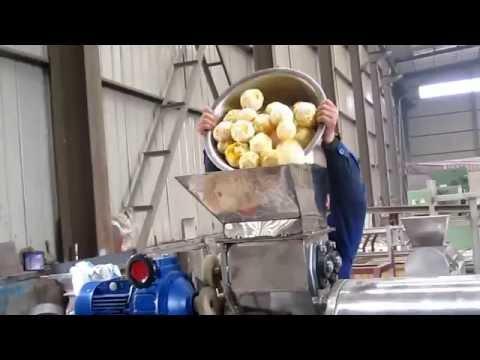 Industrial orange juice machine, orange juice extractor machine, orange pulper machine