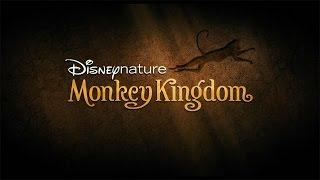 Wanda Sykes' 'Monkey Kingdom'