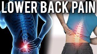 Why Do Our Backs Hurt?   Dr Stuart McGill   Modern Wisdom Podcast #081