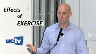 Inside the Effects of Exercise: From Cellular to Psychological Benefits