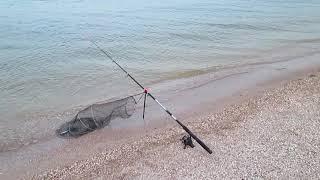 Отдыха и рыбалка базы на азовском море недорого