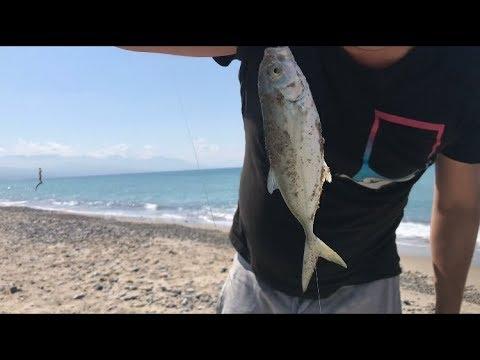 Kuban che pesca in dicembre