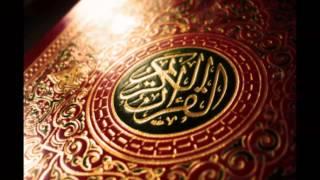 نفديه بروحنا وبنفسينا محمد صلي الله عليه محمد عباس تحميل MP3