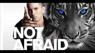 Eminem - Not Afraid (Eye of the Tiger Remix)
