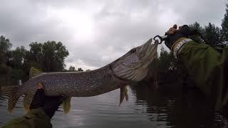 Рыбалка в мордовии на суре