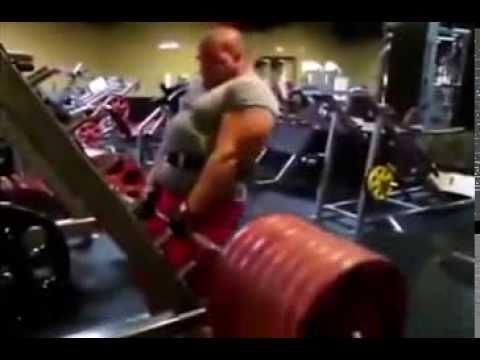 Skalioz les muscles du dos