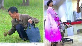 Как На Самом Деле Живут Люди В Северной Корее