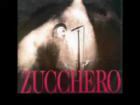 , title : 'ZUCCHERO - Pippo'