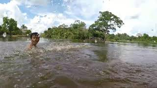 preview picture of video 'Swimming with River Dolphins in Bolivia'