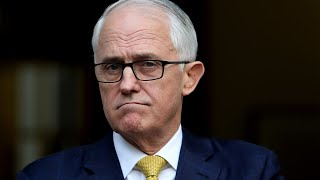 Malcolm Turnbull savaged for US election comment