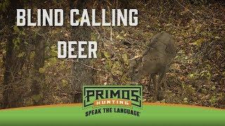 Tips for Blind Calling Deer