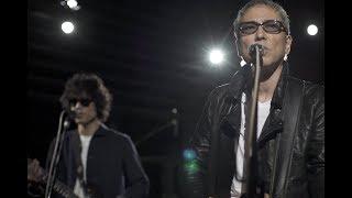 佐野元春 & ザ・コヨーテバンド スタジオライブMV