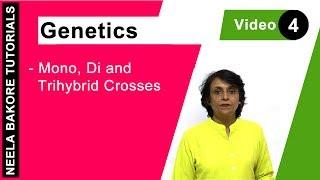 Genetics - Mono, Di & Trihybrid Crosses