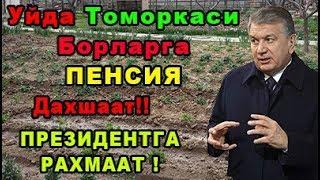 Зор Янгилик Янги Карор Шавкат Мирзиёев